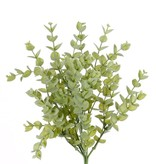 Eucalyptus Leaf Bush, 7 stems, 448 lvs., 30cm