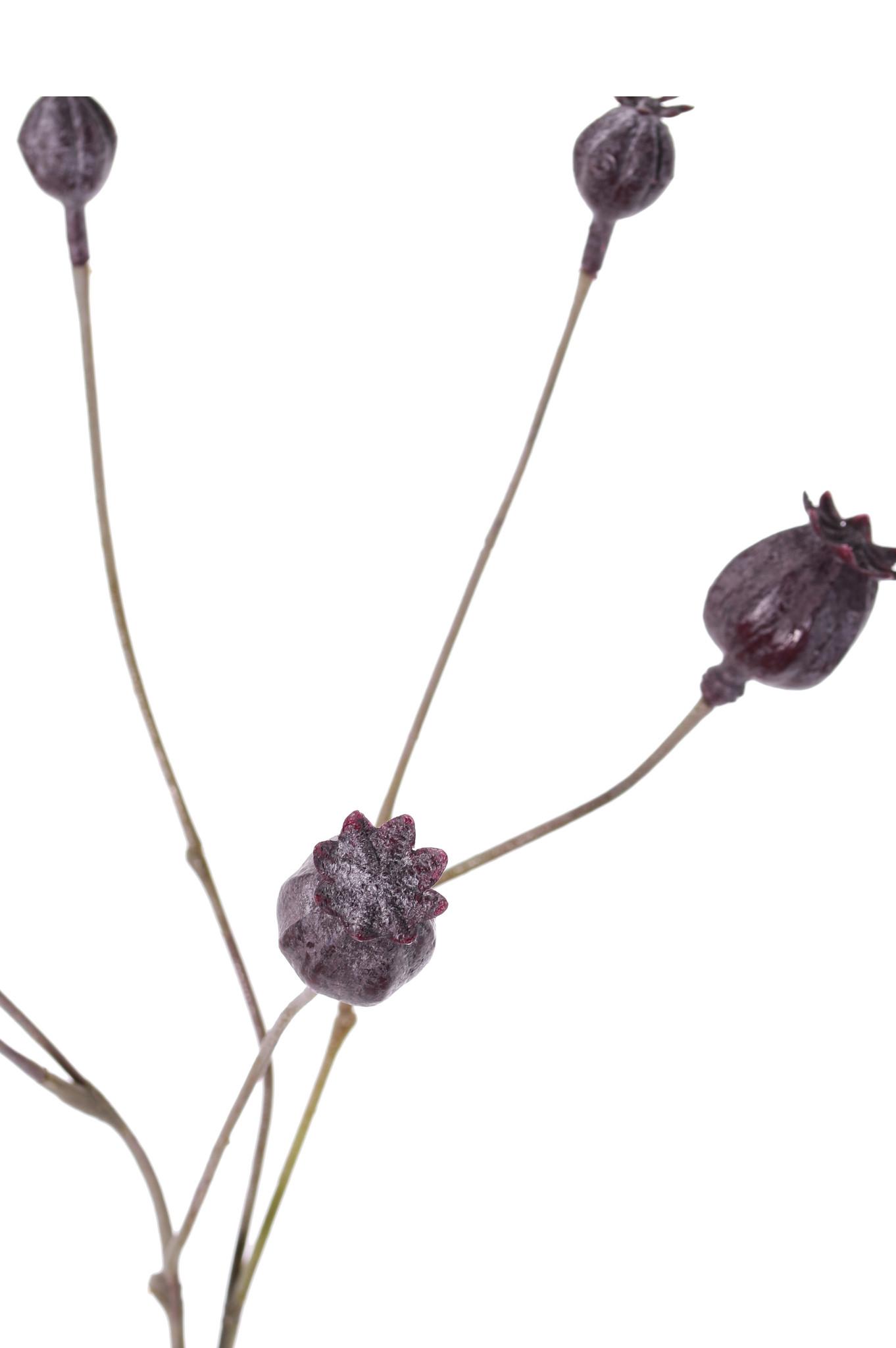 Mohnblumen, Kapselfruchtzweig, 6 Kapseln, Vollplastik, 68cm
