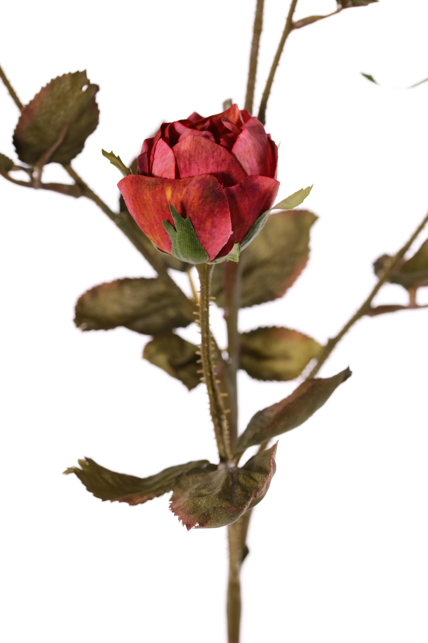 Rozentak Edith, 4 bloemen (2x Ø 8cm, 2x Ø 5cm) & 3 knop, 26 blad, 76cm