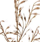 Graszweig mit 4 Grasbündel (20cm), 63cm