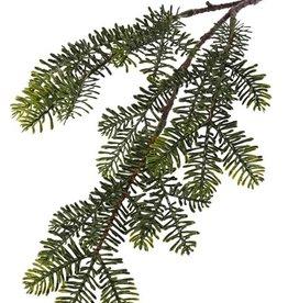 Pine spray (Abies) x3, flat needles, 53cm