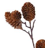 Rama de cono grande x4, con 12 conos de plástico (8x7cm & 4x3cm), 98cm