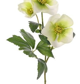 Helleborus spray x2, with 3 flowers (2x Ø 8cm & Ø 5cm) & 11 leaves, 45cm