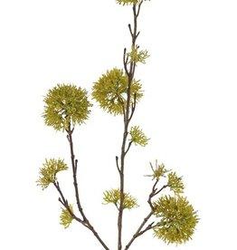 Viburnum branch, with 13 clusters, 80cm