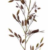 Briza (Trilgras) met 13 toeven (91 bevertjes) & 2 blad, 98cm