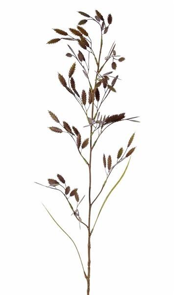 Briza (Zittergras) mit 13 Büscheln (91 Rispen) & 2 Blättern, 98cm