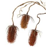 Kaardeboltak (Dipsacus), 3 vertakkingen, met 3 plastic kaardebollen (2x 8cm & 1x 6cm), 90cm