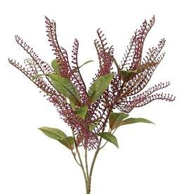 Pieris - Lavendelheide, kurz, 3 Büschel & 15 Blätter, 40cm