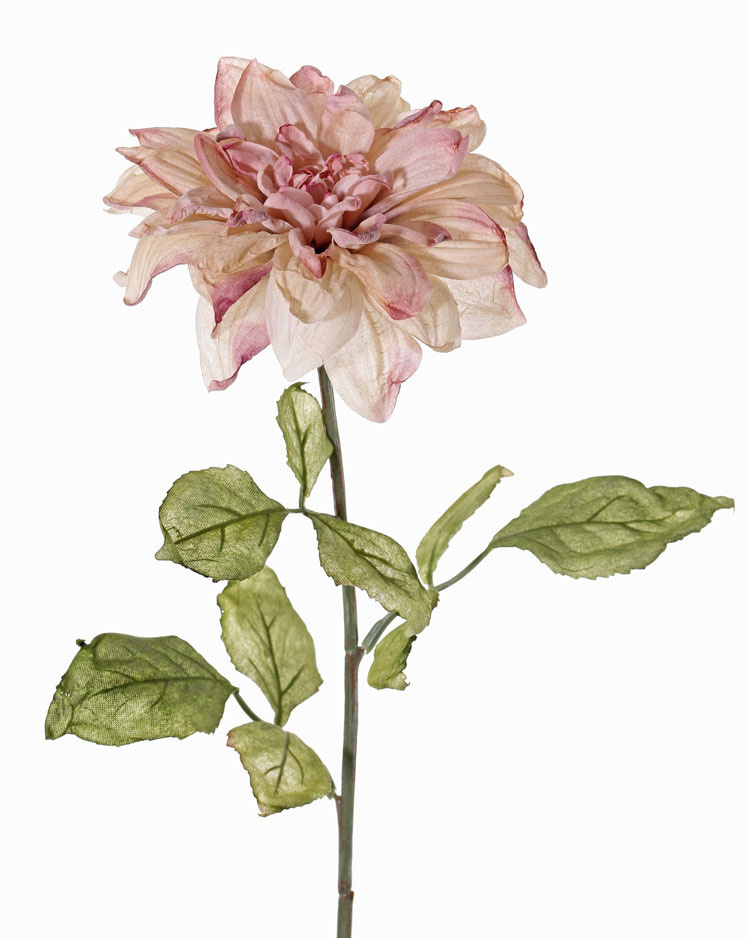 Dahlia, Ø 17cm & 9 blad, 68cm