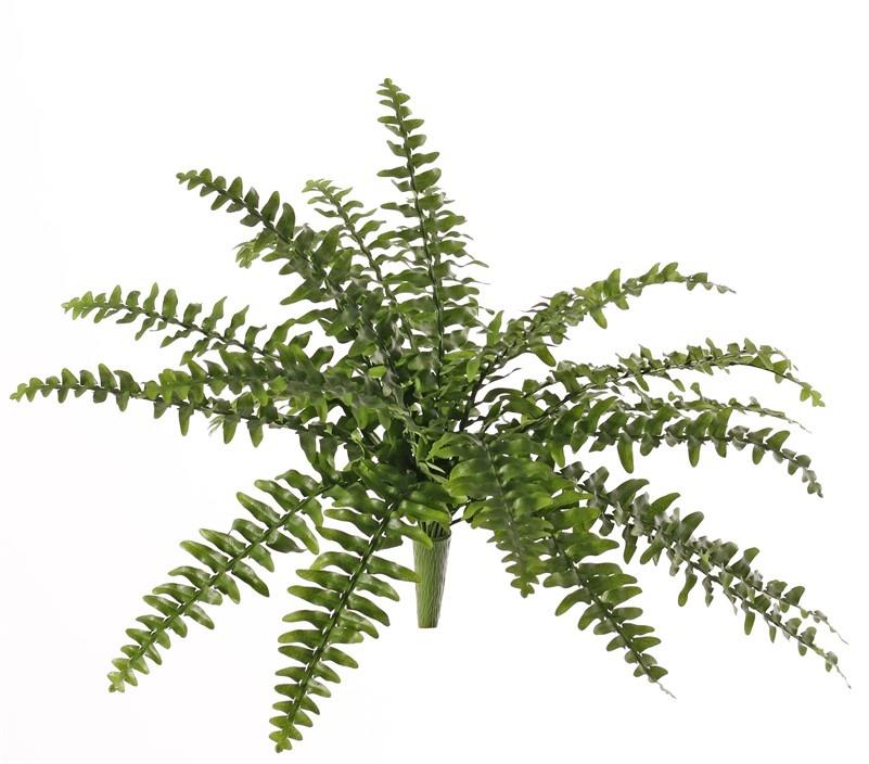 Boston fern (Nephrolepsis) 21 hojas, 2 colores de verde, Ø 50cm, resistente al fuego