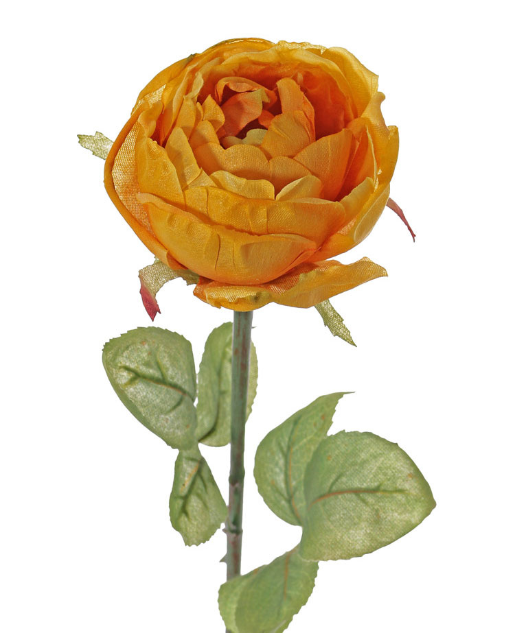 Rose Diana, Ø 8cm, mit 7 Blättern, 36cm