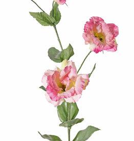 "Lisianthus, Eustoma ""de Luxe"" 3 flores, 1 capullo,  10 hojas 81cm"