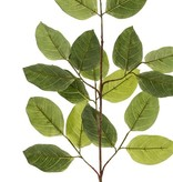 Banyan branch, 20 leaves., 82cm - fire retardant