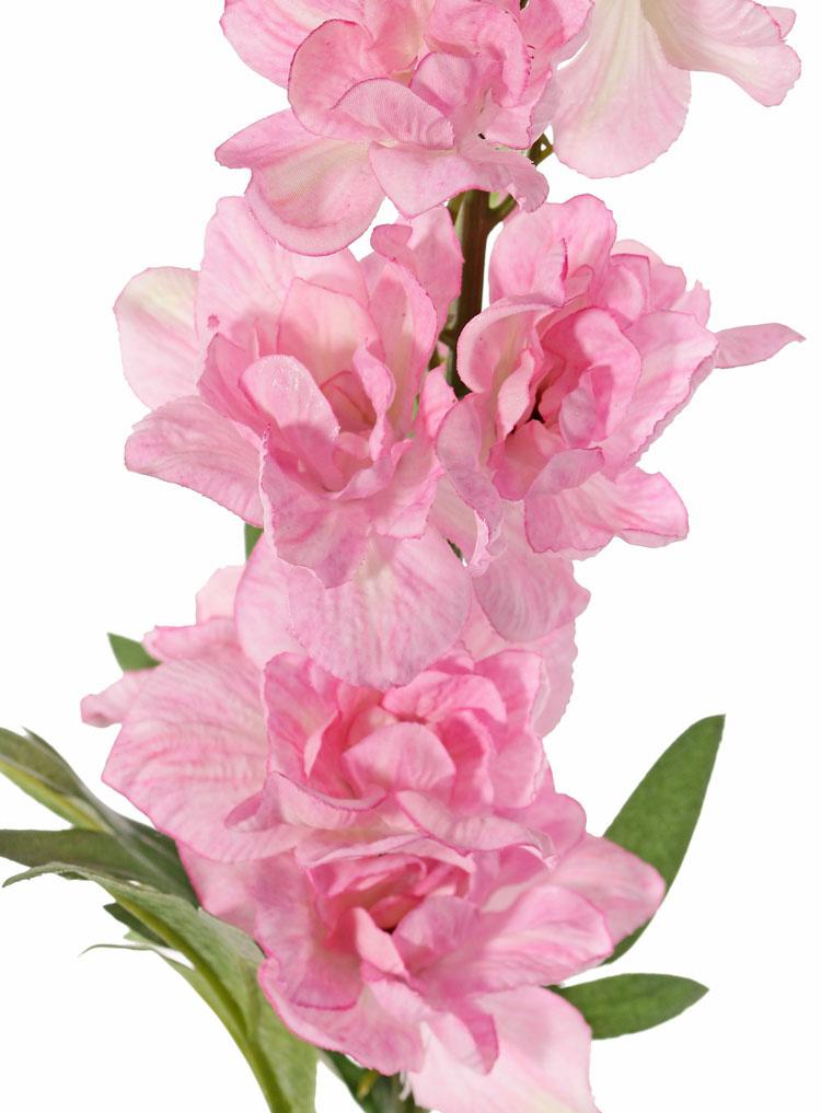 Delphinium  'GardenArt', 18 flores, 7 capullos,  3 hojas, 91cm