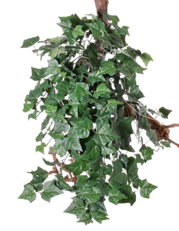 """Hedera (English Ivy) Efeubusch, Gigant """"Vital Greens"""",  mit 282 Blättern, 86cm, schwer entflammbar"""