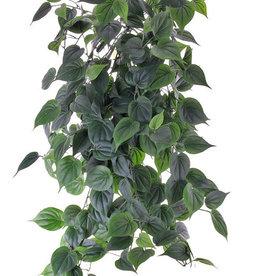 Philodendron giant hanger, 'Vital greens' 19 vertakkingen, met 294 blad, 91 cm, brandvertragend