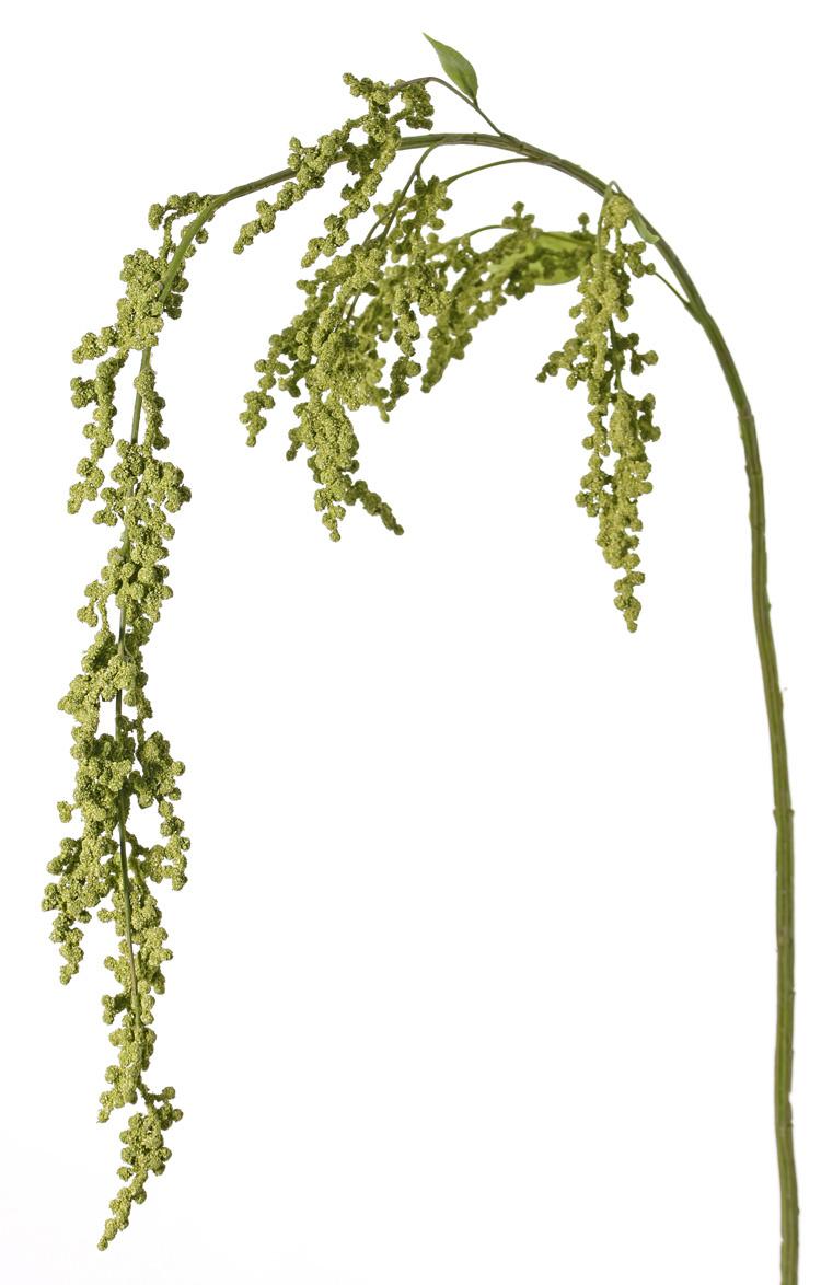 Amarant maxi, 5 Verzweigungen, 27 Blütenstände, 3 Blätter, 147cm