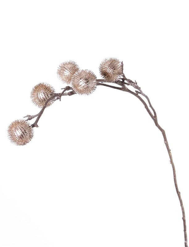 Distel-Zweig mit 2 Verzweigungen, 5 Kugeln (Ø 6cm), 100cm