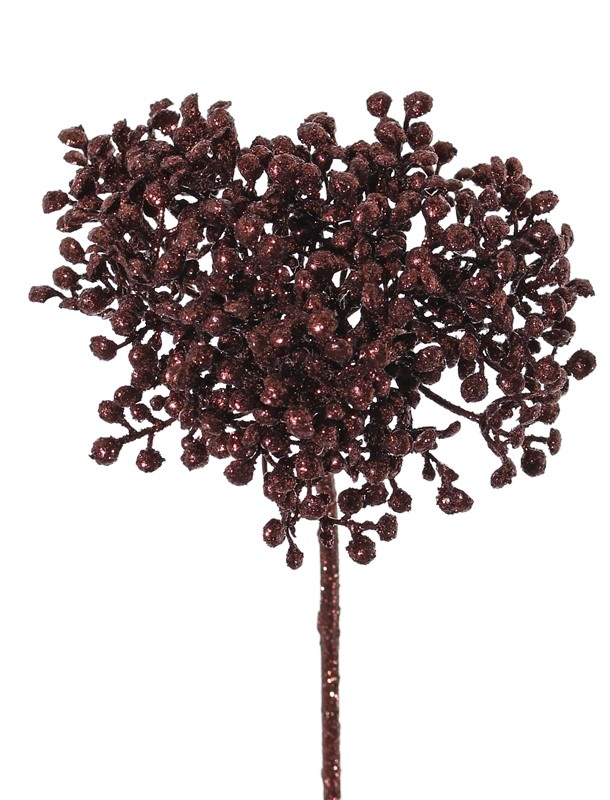 Nertera (Korallenbeere) pick glimmer 16cm, Ø 10cm
