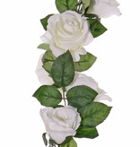 Rozenslinger 'Honeymoon', 32 bloem (16Lg ø9cm/16Md ø7cm) & 90 blad, 180cm