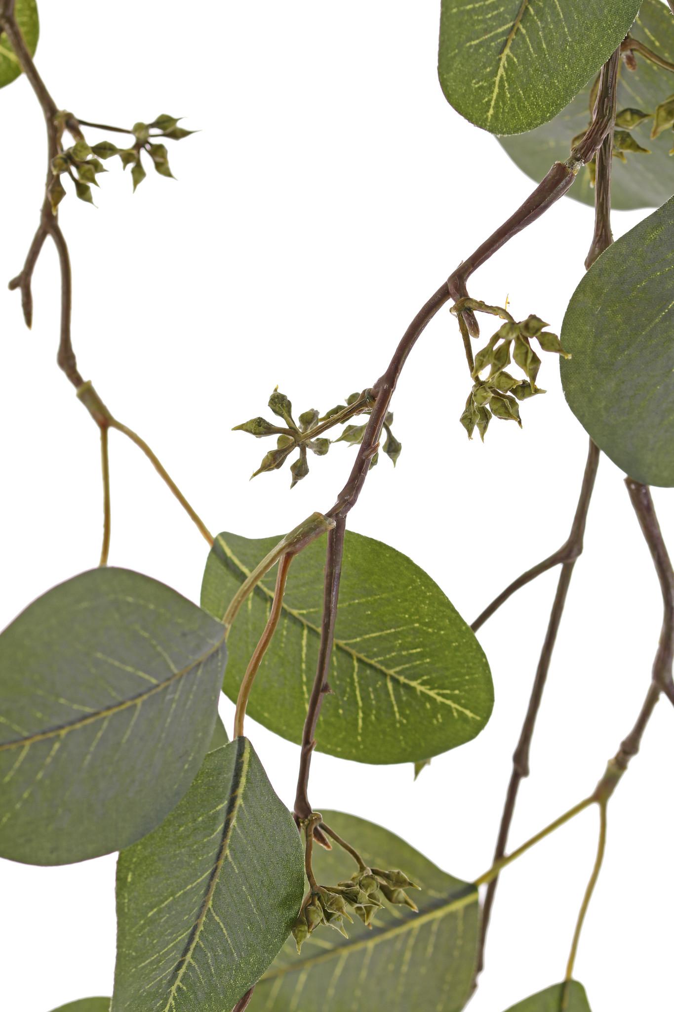 Eucalyptus-Blattzweig, hängend, 2 Verzweigungen, 45 Blätter & 13 Früchte, 145cm