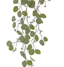 Eucalyptus bladtak hangend x2, 62 blad & 52 fruits, 122cm