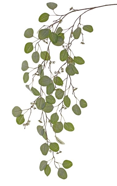 Eucalyptus leaf hanging branch x2, 62 leaves & 52 fruits, 122cm