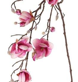 Rama de magnolia, 7 flores, 5 grande & 15 capullos pequeno, 115 cm