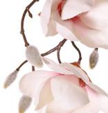 Magnolienzweig, hängend, maxi, 4 Verzweigungen, 7 Blumen u. 5 große u. 15 kleine Knospen, 115 cm