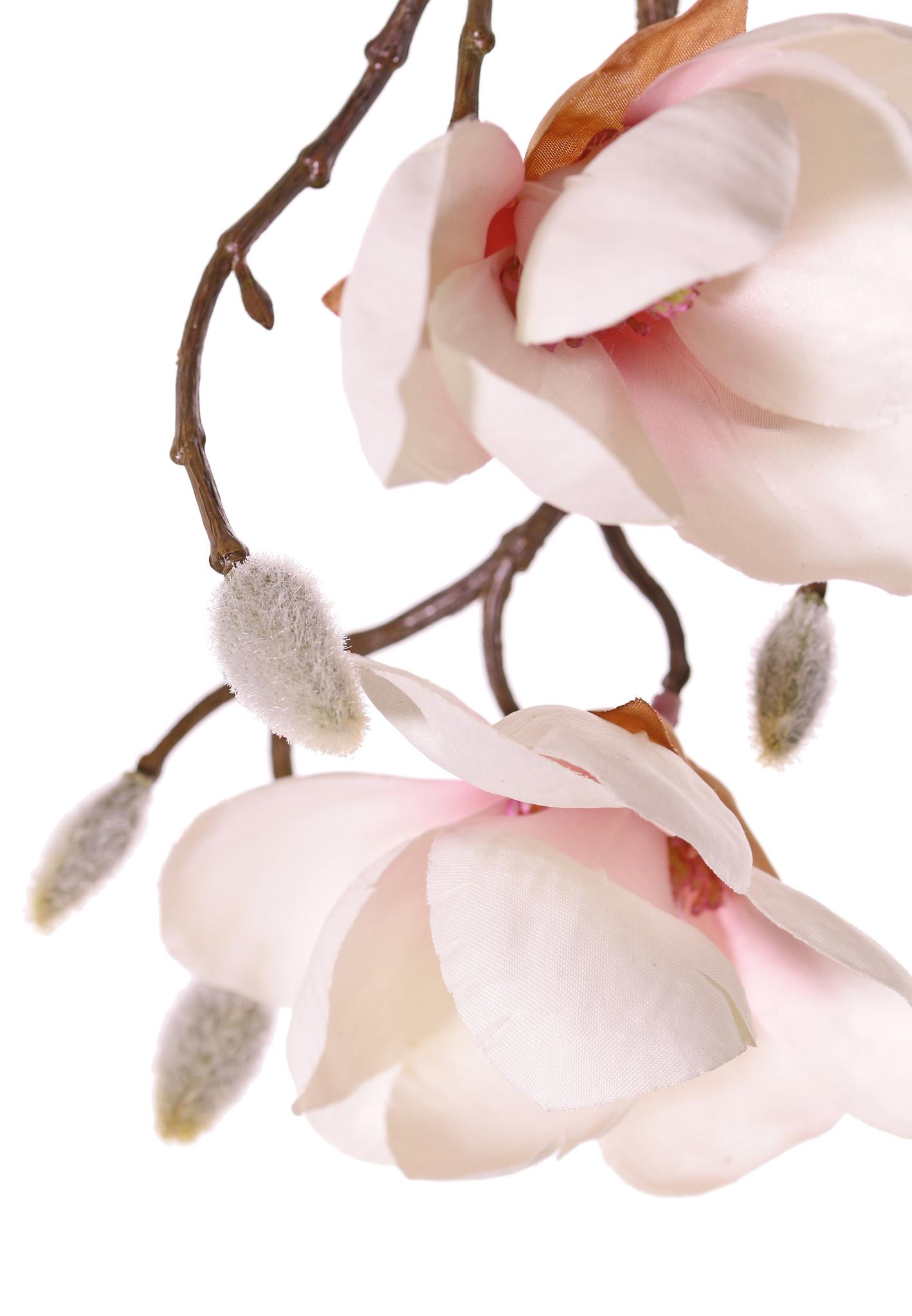 Magnolia hanger maxi met 4 vertakkingen, 7 bloemen, 5 grote & 15 kleine knoppen, 115 cm