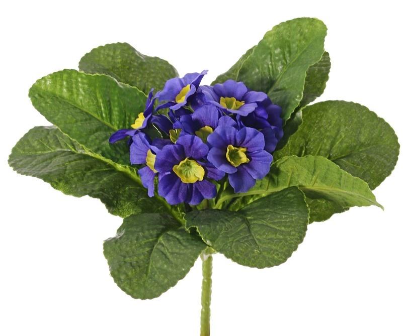 Primula (Sleutelbloem), 12 bloemen & 9 blad, Ø 20 h, 20 cm