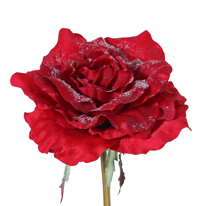 Roos gigant met sneeuw 50cm