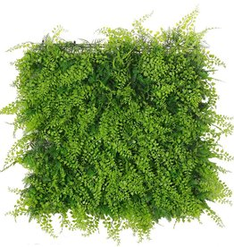 "Artificial green wall element ""Basic"", 50 x 50 x 8 cm, PE, UV safe"