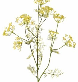 Dille (Anethum),  11 bloemclusters, 13 sets met blaadjes, (top met ijzerdraad) 78 cm