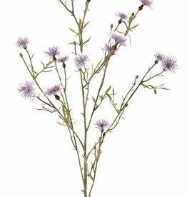 Knoopkruid (Centaurea) 7 vertakkingen, 15 bloemen, 17 knop & 10 blad, flocked, 80cm