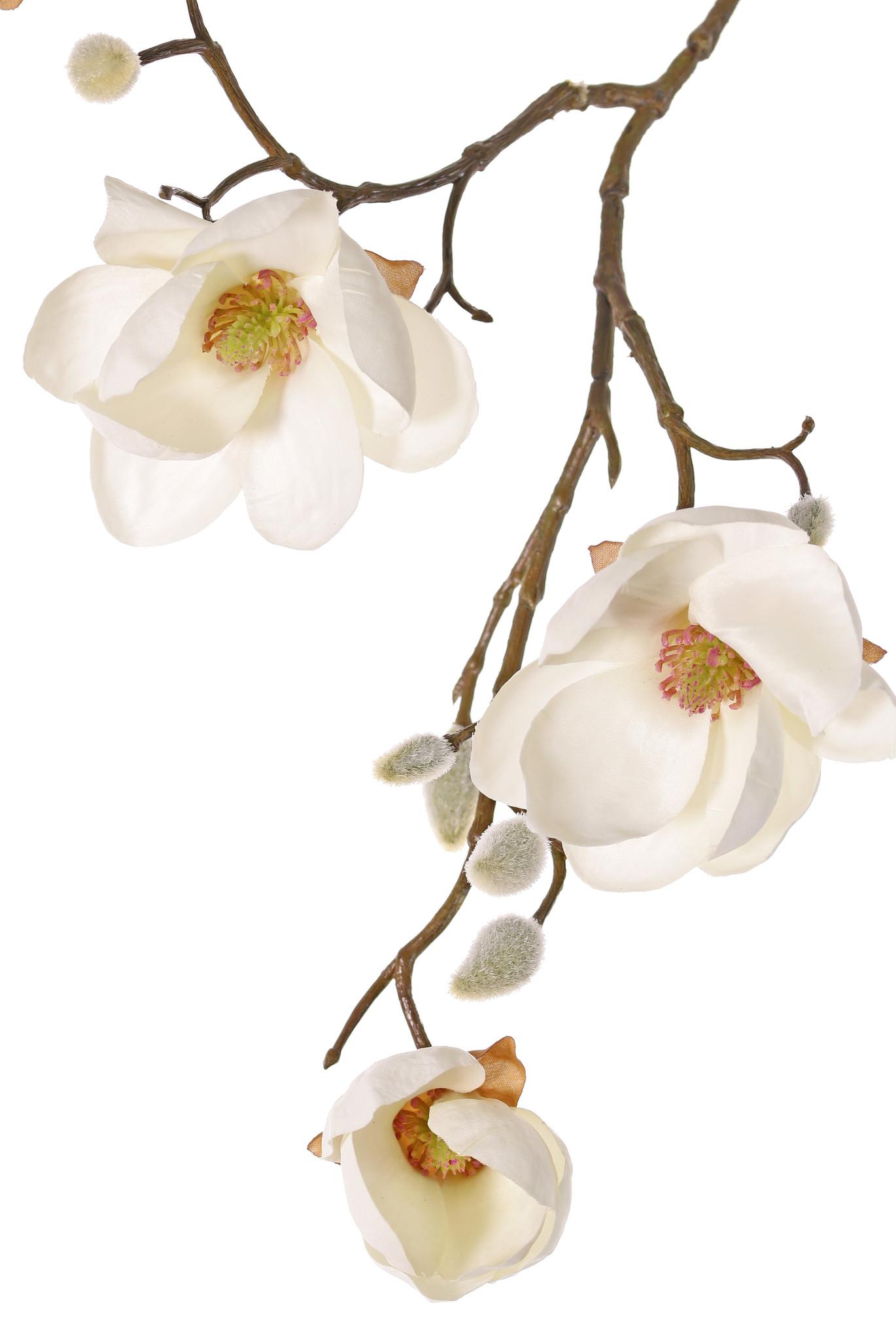 Magnolia, 5 flowers (3x Ø 8cm, 2x 5 cm) & 12 buds, 80 cm