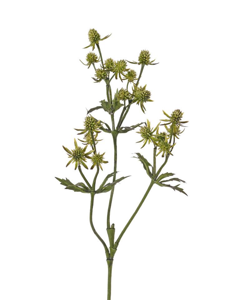 Cardo (Eryngium), 20 cardos de plástico, & 24 hojas, 65cm