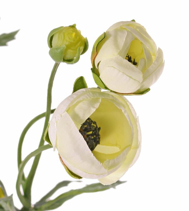 Ranonkel (Ranunculus), 6 flowers (4x Ø 4,5 cm /2x Ø 3 cm ), 3 buds & 24 leaves, 65 cm