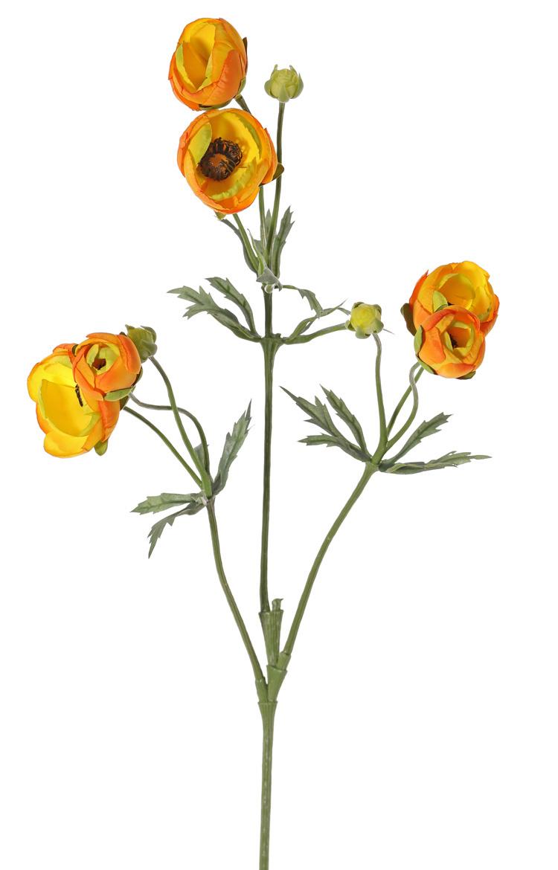 Ranonkel (Ranunculus) met 3 vertakkingen, met 6 bloemen (4x Ø 4,5 cm /2x Ø 3 cm ), 3 knop & 24 blad, 65cm