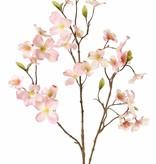 Hartriegel (Cornus) 3 Verzweigungen, 29 Blüten, (9 L / 10 M / 10 S) & 12 Blätter, 83 cm