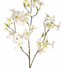 Kornoelje (Cornus) 3 vertakkingen, 29 bloemen (9L / 10M / 10Sm) & 12 blaadjes, 83 cm