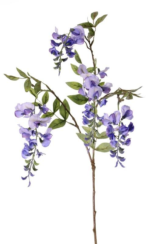 Wisteria  x3, 4 flowers (2L/2M) & 5 leaves, 80cm