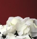 Rosenblaetter, lose, 50*45mm, mit Struktur, 300 Stk. in einem Beutel