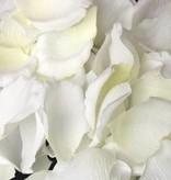 Rose petals, 50*45mm, 300 pieces per plastic bag