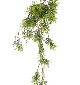 Rosemary 'Green Wave' on a moss bulb Ø 8 cm, 25 plastic leaf clusters, with rope, 60cm