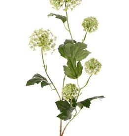 Viburnum (Schneeball) 3 Verzweigungen, 5 Blüten, 7 Blätter, 90 cm