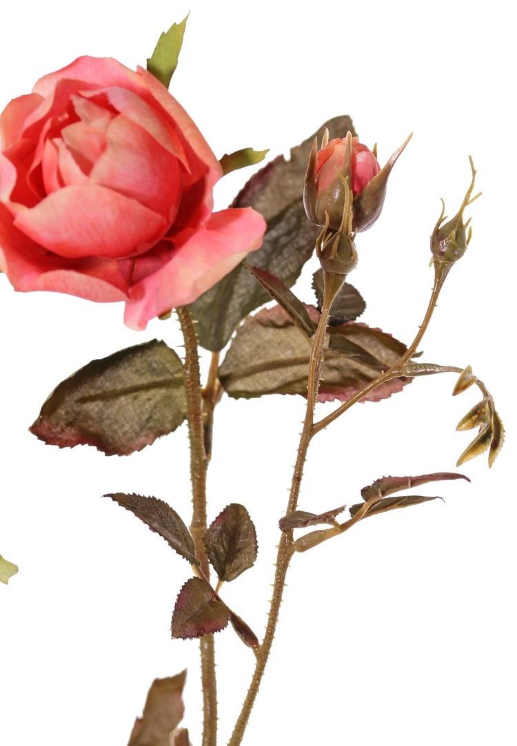 Branche de rose Edith, 4 fleurs (2x Ø 8cm, 2x Ø 5cm) & 3 boutons, 26 feuilles, 76cm