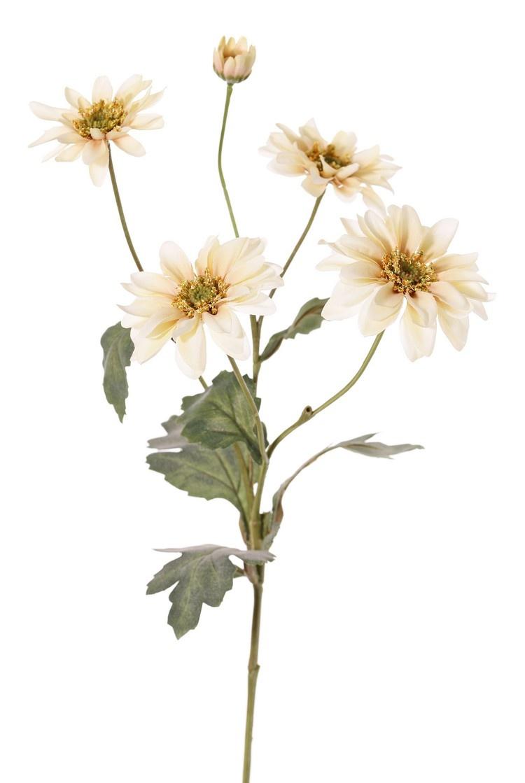 Chrysantheme 'Sol', 4 Blüten, (3x große / 1x mittelgr.), 1 Knospe (Ø 2 cm) & 6 Blätter (3x gro./ 3x klein), 65 cm