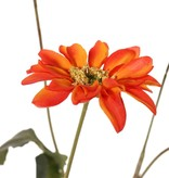 Chrysant 'Sol', 4 bloemen (3 L / 1 M), 1 knop (Ø 2 cm) & 6 blad (3 L / 3 S), 65 cm
