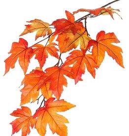 """Rama de Arces (Acer) """"Ruby"""", 15 hojas (Ø 10/14cm), 91cm"""